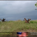 449px-Utah_beach01 1